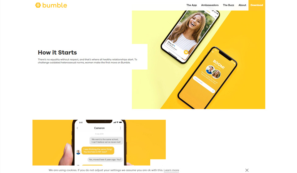Bumble Review 2020 - Everything You Have To Know About It